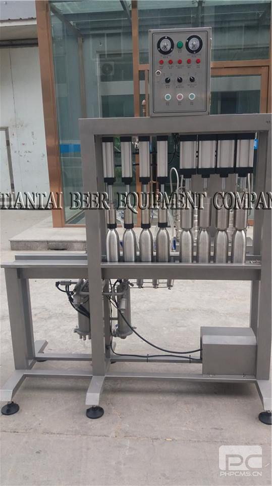 Automatic 4 Head Bottle Filling Machinebeer Filling